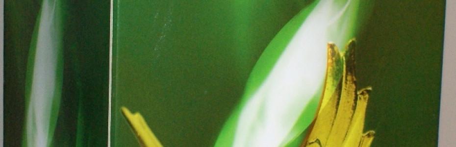 Упаковка из микрогофрокартона с ламинацией